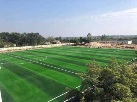 合浦青少年足球训练中心标准十一人制足球场