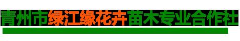 青州市绿江缘花卉苗木专业合作社