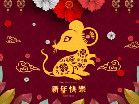 临沂领创建材有限公司恭祝2020新春快乐