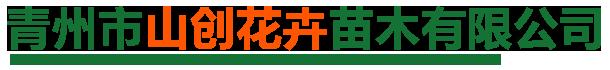 青州市山创花卉苗木有限公司