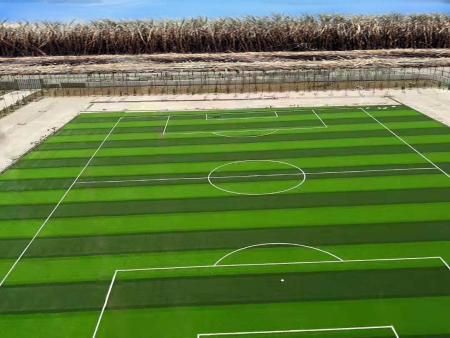 合浦青少年足球训练中心
