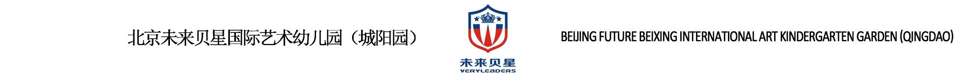 青岛未来贝星国际教育信息咨询有限公司