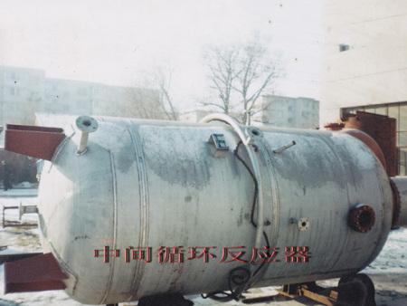 中间循环反应器