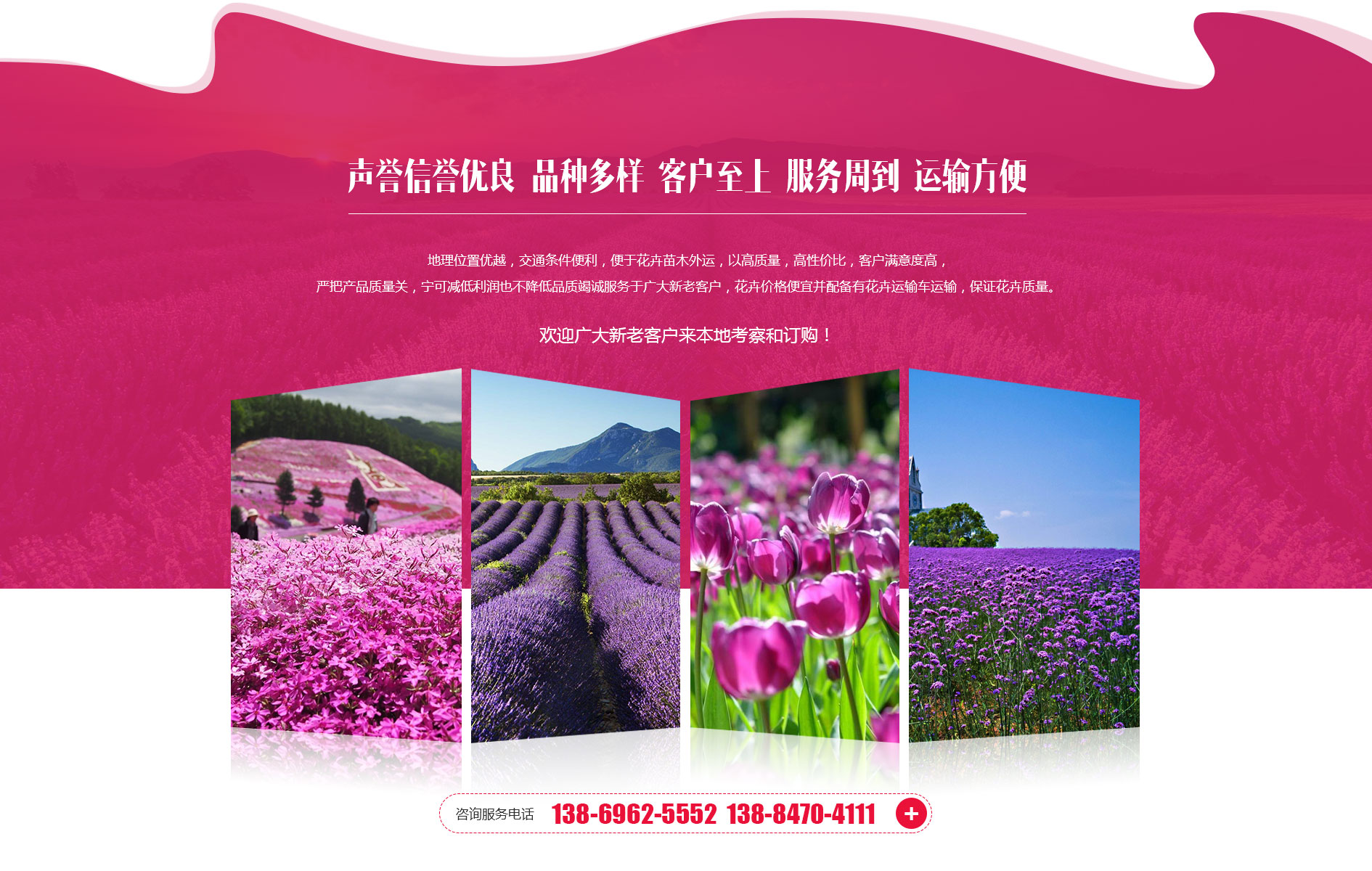 青州孟振花卉