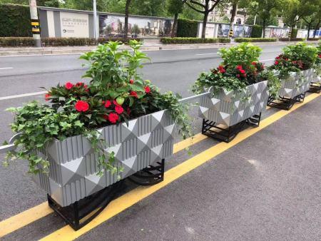 植物知識 | 立體花壇知多少