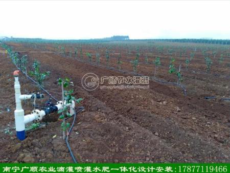 南宁广顺自动化灌溉滴灌管带设备