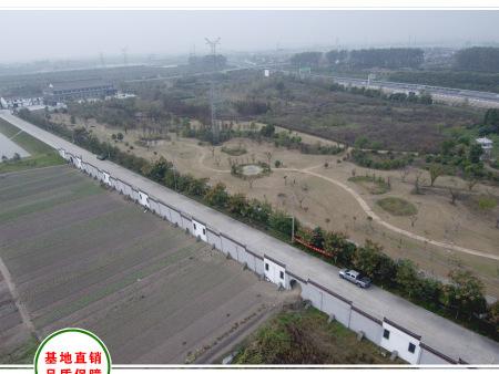湖北襄阳600亩花海工程测绘现场