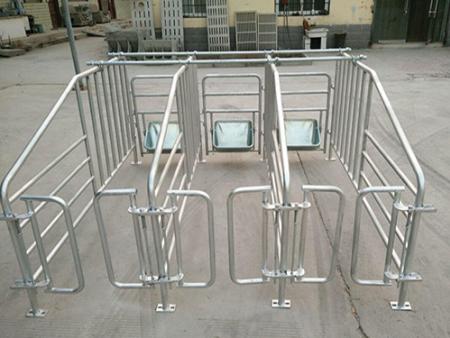 为什么要使用高床分娩栏?新乡猪用产床保育床养殖设备厂家