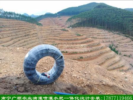 广西滴灌设计 南宁本地专业公司包安装