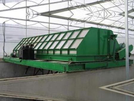 完善的猪场自动料线设备帮您自动化管理  母猪限位栏设备生产厂家为您解析