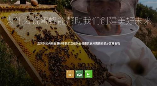为什么说蜜蜂能帮助我们创建美好未来?