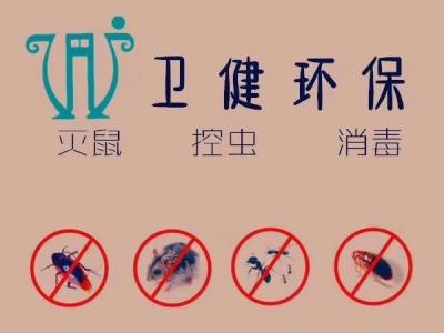西安专业灭老鼠-灭蟑螂-灭害虫-除老鼠蟑螂消杀公司-卫健环保