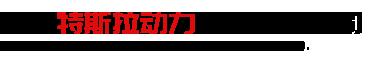 潍坊特斯拉动力科技有限公司