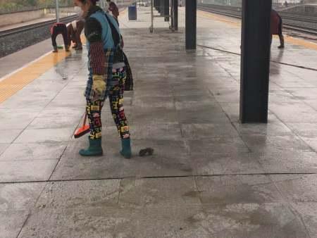 火车站台山猫视频直播