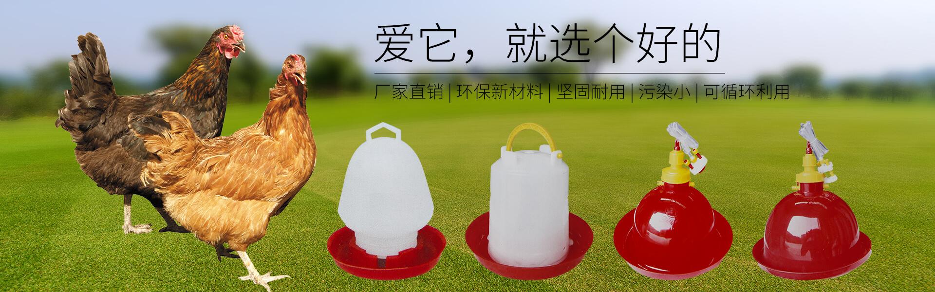 鸡鸭养殖塑料平网,塑料平网厂家,鸡鸭用料槽,鸡鸭用料桶