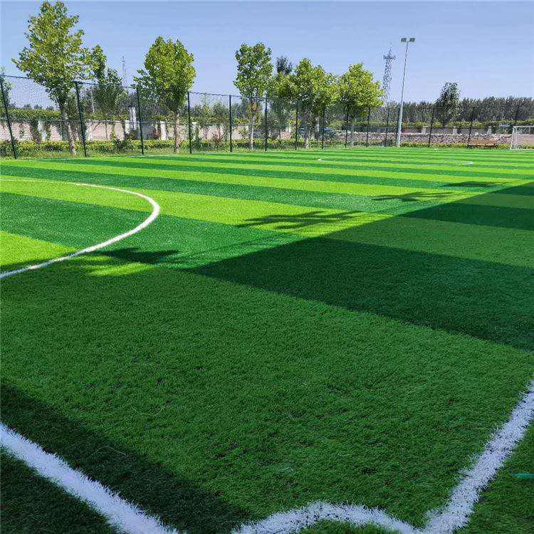 足球场草坪施工案例