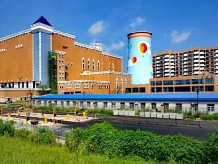 安徽芜湖中电环保发电有限公司 垃圾焚烧电