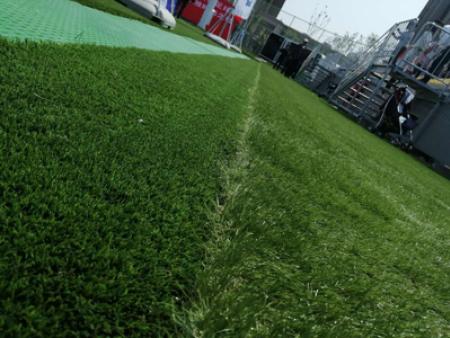 甘肃人工草坪