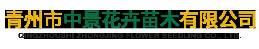 青州市中景花卉苗木有限公司