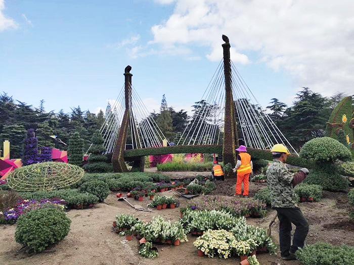 立体绿化工程设计