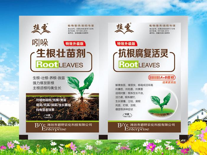 巧施葉面肥促進生根