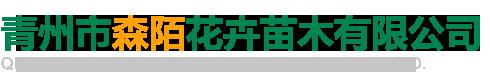 青州市森陌花卉苗木有限公司