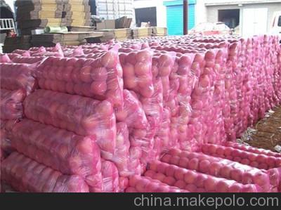 果蔬保鮮冷庫— 100噸水果冷庫造價是多少