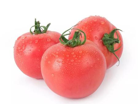毛粉西红柿