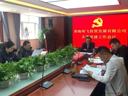 中共青海明飞投资发展有限公司 支部委员会党建工作会议  会议纪要