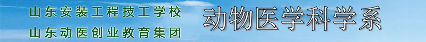 山东省安装工程技工学校