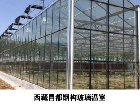 西藏昌都钢构玻璃温室