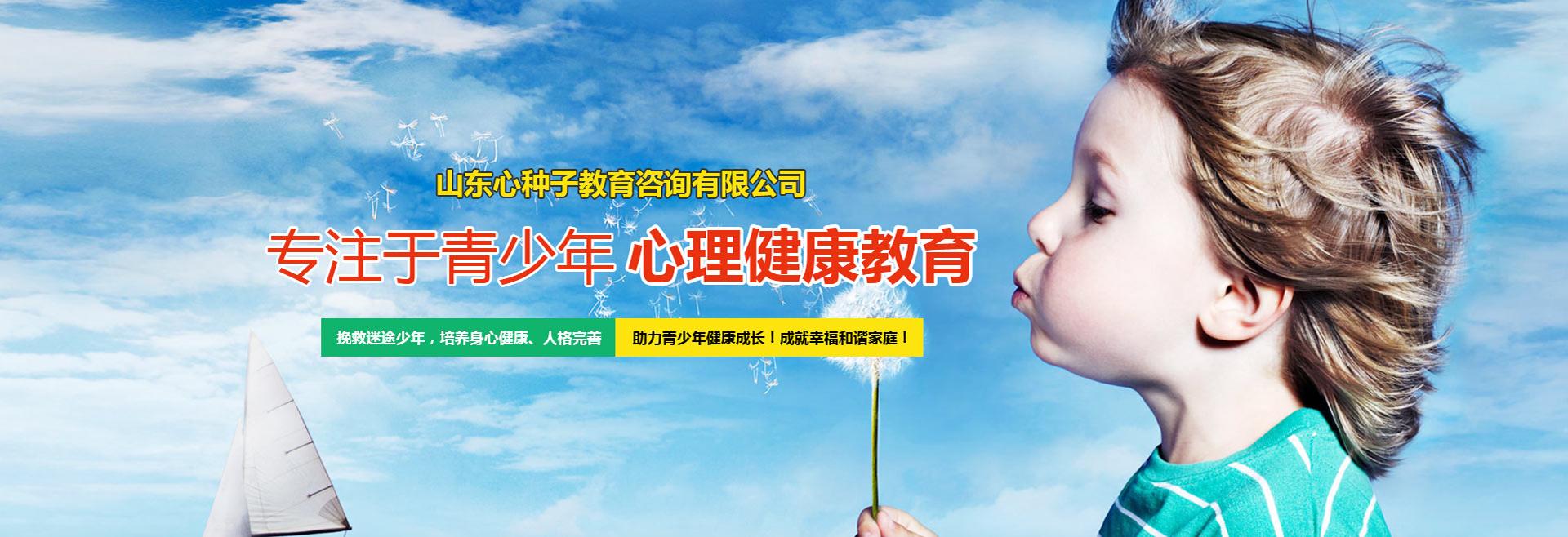 山东心种子教育咨询有限公司