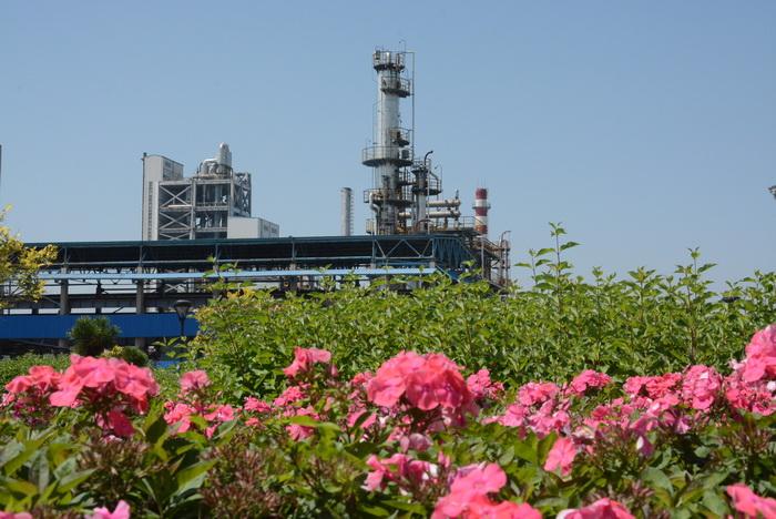 蘭炭廢水除油處理工藝