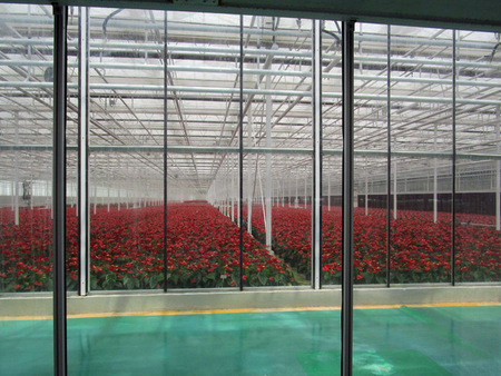 日光温室建造技术