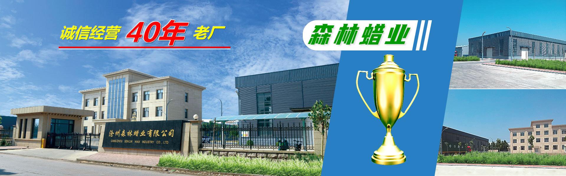 沧州森林蜡业公司大门