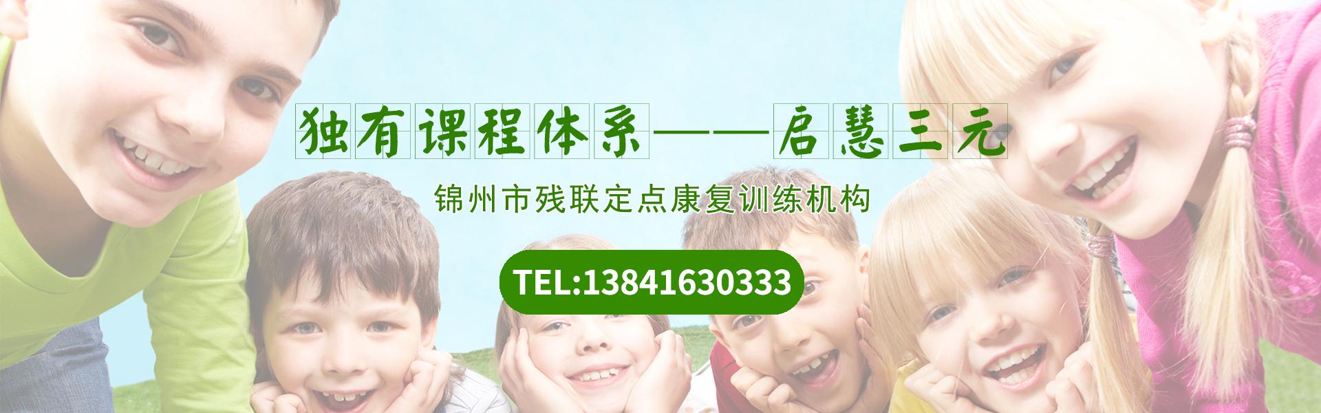 沈阳自闭症 沈阳语言发育迟缓 锦州多动症 锦州注意力不集中 锦州学习障碍