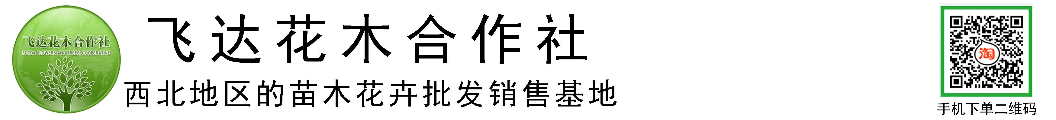 临洮县飞达花木种植农民专业合作社