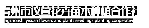 青州市议萱花卉苗木种植专业合作社