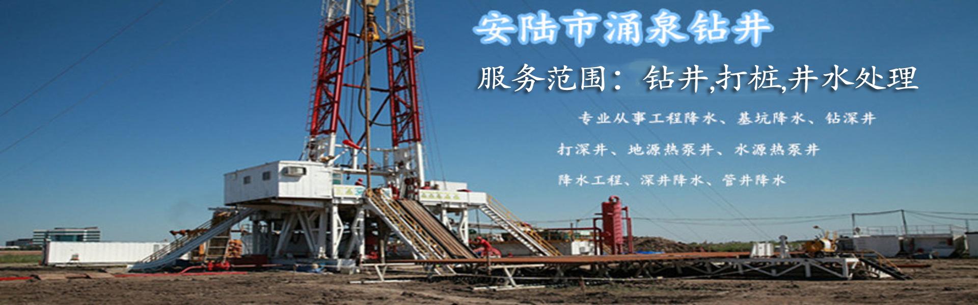 湖北钻井,打桩,井水处理公司