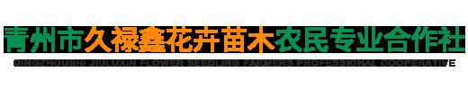 青州市久禄鑫花卉苗木农民合作社