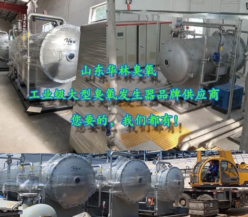 飲用水廠臭氧發生器生產廠家