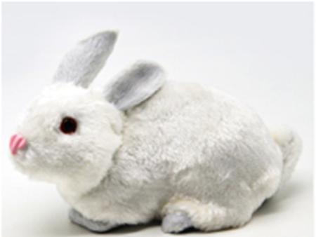 兔外形标本