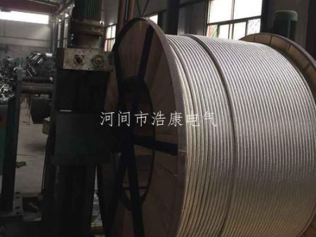 钢芯铝绞线厂家