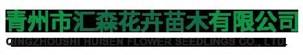 青州市汇森花卉苗木有限公司