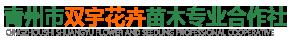 青州市双宇花卉苗木合作社