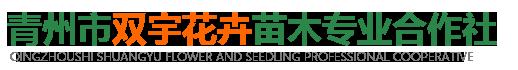 青州市双宇花卉苗木专业合作社