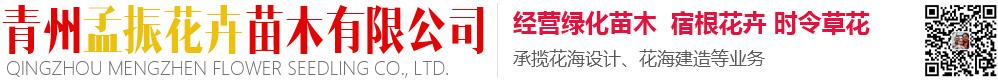 青州孟振花卉苗木有限公司