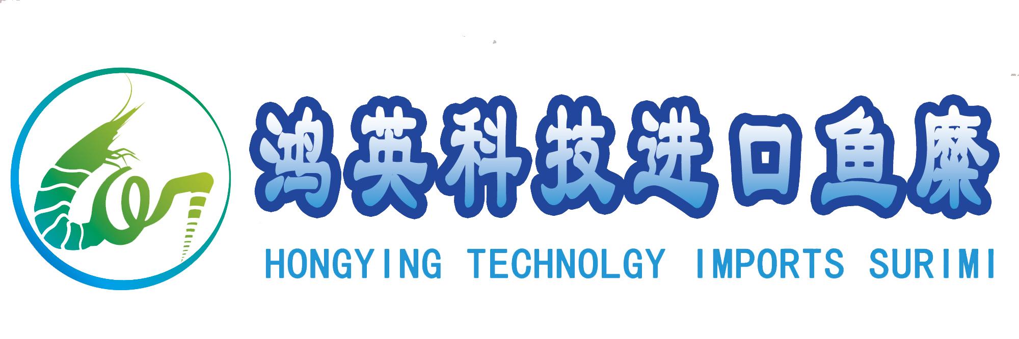 龙岩鸿英科技发展有限公司