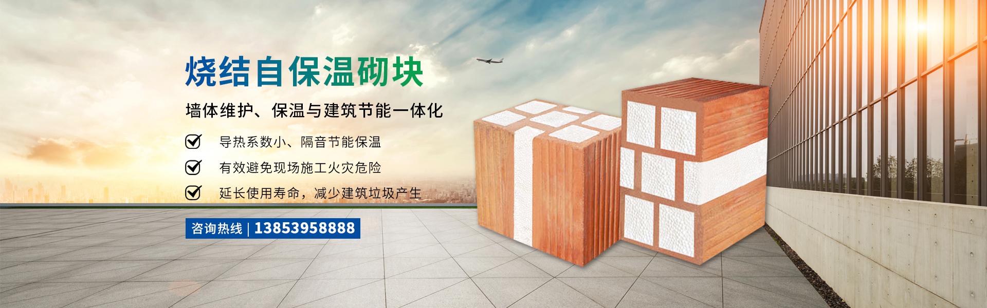 燒結自保溫砌塊,保溫磚廠家,山東燒結自保溫砌塊,天翱節能保溫科技