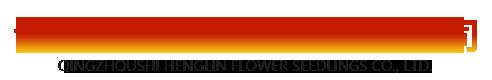 青州市恒霖花卉苗木有限公司